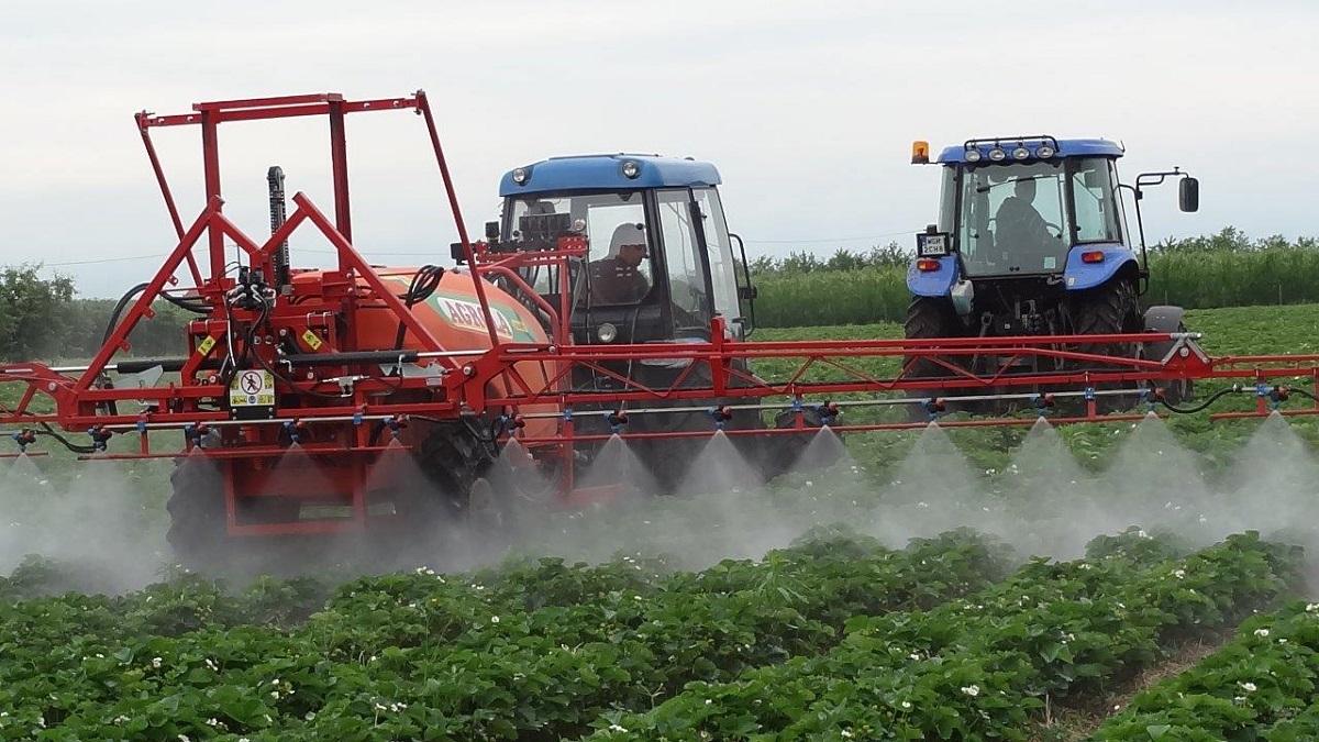 opryskiwanie truskawek, grupa truskawkowa, zalecenia dotyczące nawożenia truskawek