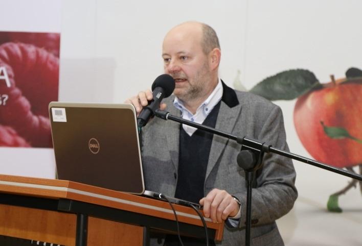 Tomsz Solis