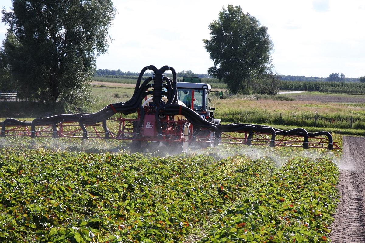 opryskiwacz do truskawek, jagodnik.pl, uprawa truskawek, grupa truskawkowa, nawożenie truskawek, ochrona truskawek, Bury Pelikan