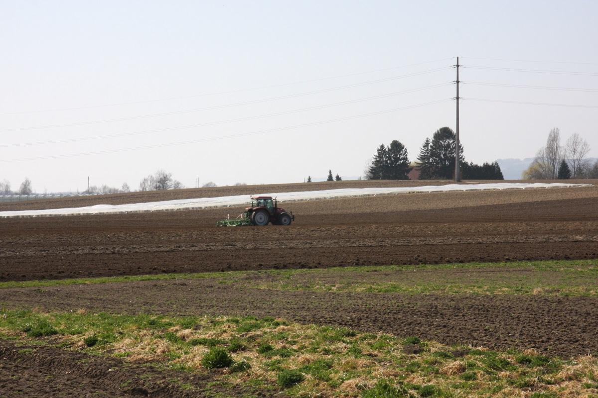 nawozy o spowolnionym działaniu, jagodnik.pl, uprawa gleby