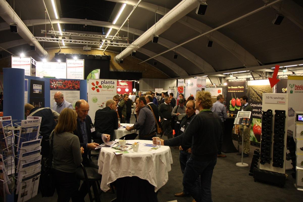uprawa truskawek, ISFC s'Hertegenbosch, Avoird Trayplant, BVB Substrates, truskawka, malina, borówka wysoka,