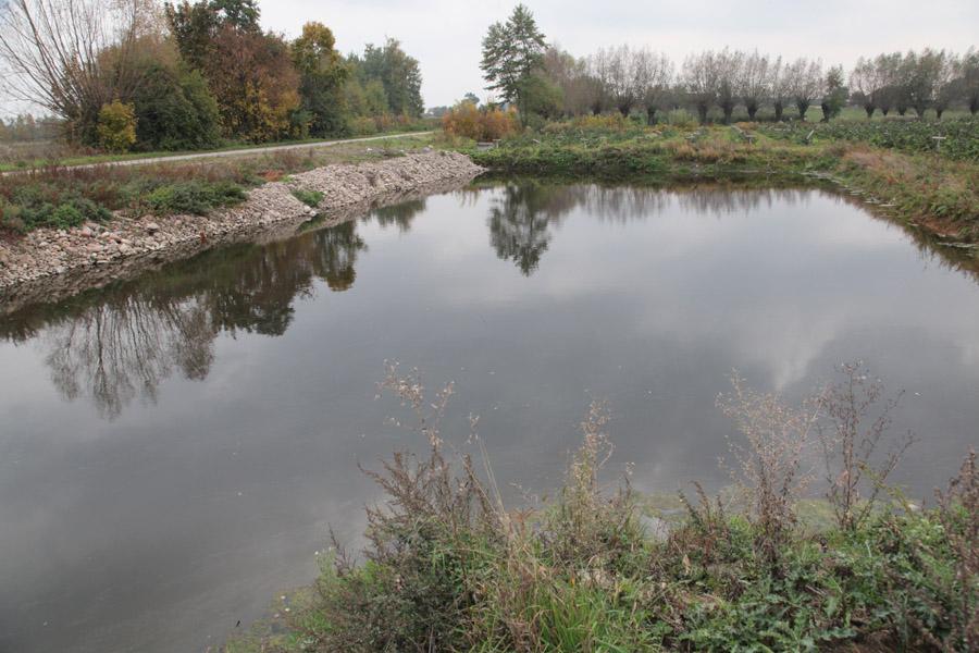 analiza wody, malinowe factory, uprawa malin