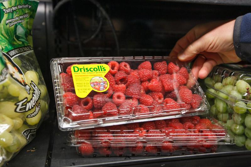 świat, finanse i prawo, truskawka, malina, borówka wysoka, opakowania dla jagodowych, produkty convenience