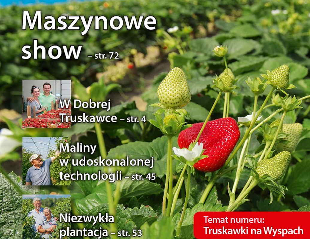 aktualności, Polska, truskawka, malina, borówka wysoka, porzeczka, inne, Jagodnik 6/2014