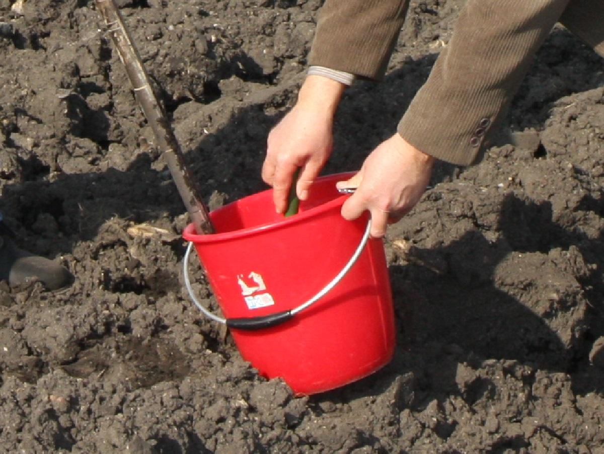 pobieranie próbek gleby